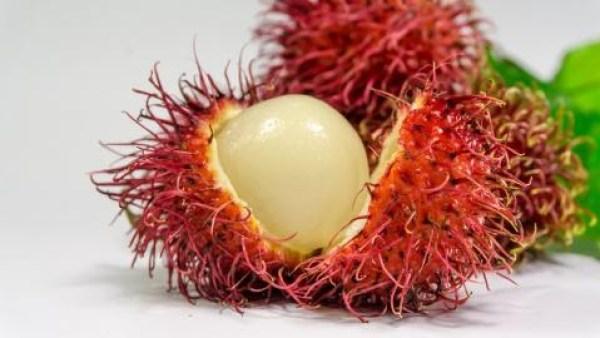 rambutan 6 fructe cu adevărat exotice și beneficiile acestora