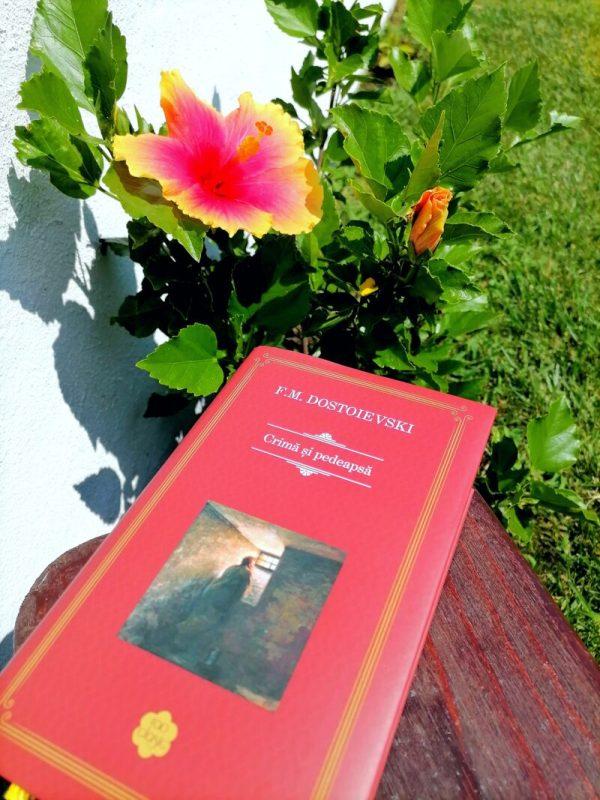 Colecția - Crimă și pedeapsă carte