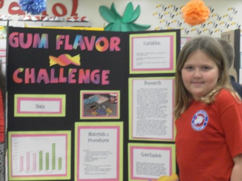 small resolution of 10 Pretty 4Th Grade Science Fair Projects Ideas 2021