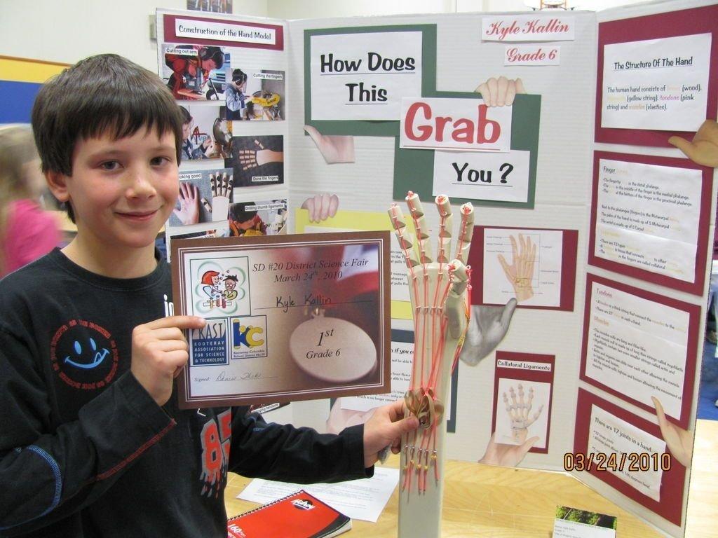 10 Stylish Seventh Grade Science Fair Project Ideas