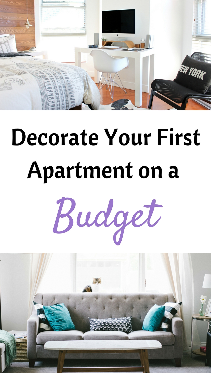 How to Decorate Your First Apartment on a Budget  Uniquely Mickie