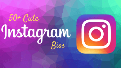 50+ Cute Instagram Bios | Short and Simple Quotes for Instagram Bios