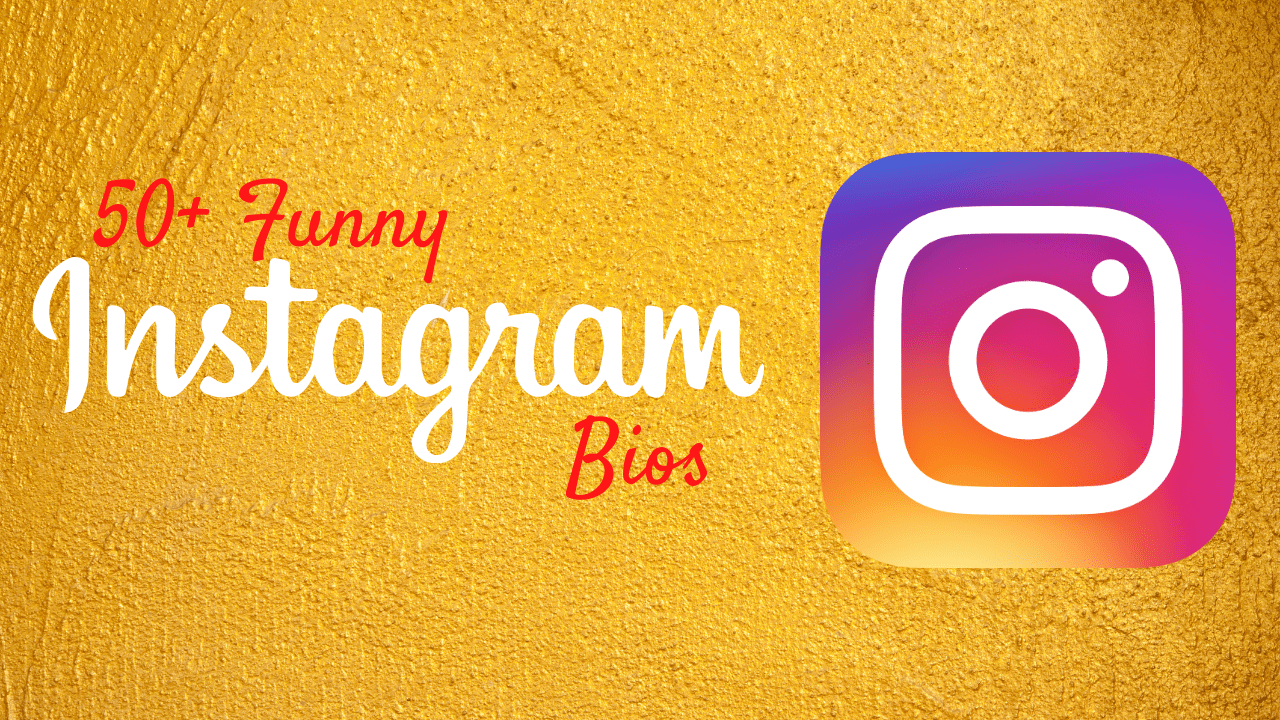In this Article, We have Mentioned 50+ Cute Instargram Bios and Quotes for Instagram Bios, which you can share on your Instagram