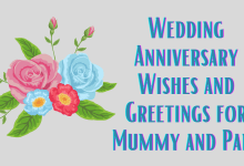 Wedding Anniversary Wishes and Greetings for Mummy and Papa
