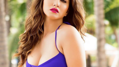 Sunny Leone Hot Photos: Top 8 Sunny leone hot and Sexy Pictures
