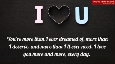 25+ I Love you Quotes and Messages for him/her