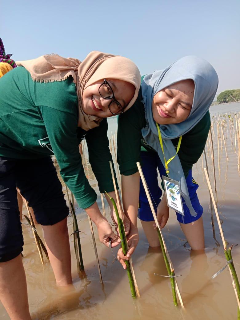 aksi tanam mangrove mahasiswa unisbank