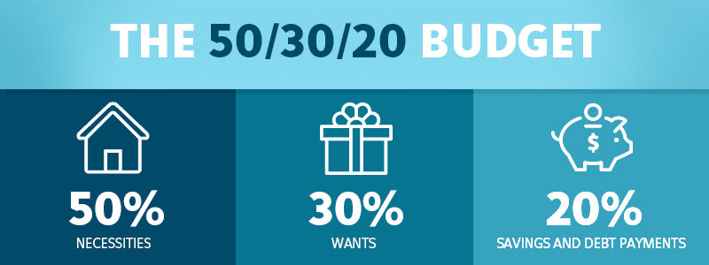 50 30 20 budget graphic