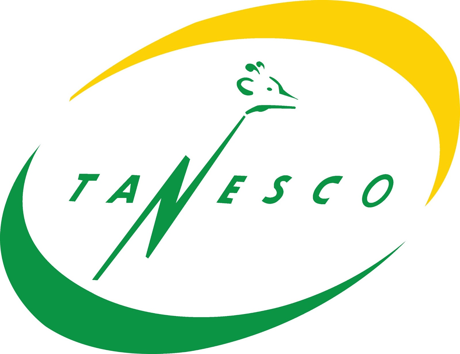 Image result for tanesco tz