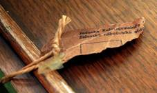 Prague curators attached this tag to the Pardubice scroll.