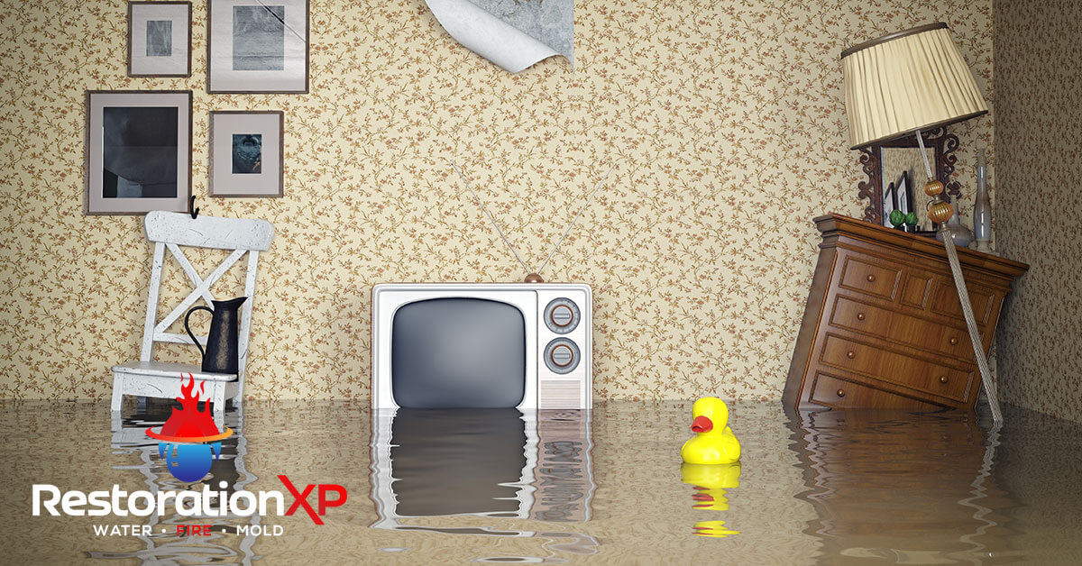 24/7 water damage remediation in Frisco, TX