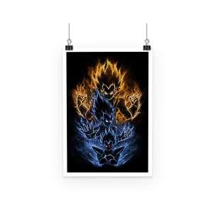 Poster Dragon Ball Z Vegeta Evolution 2
