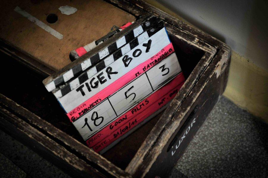 tiger boy roma fringe