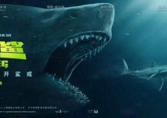 shark primo squalo banner