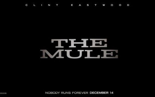the mule film