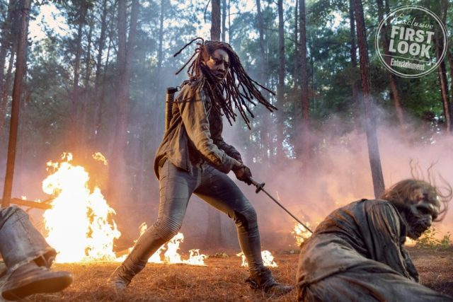 the walking dead 10 ew