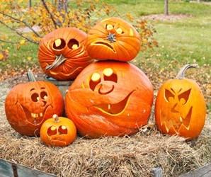 Imagini pentru dovleac de halloween