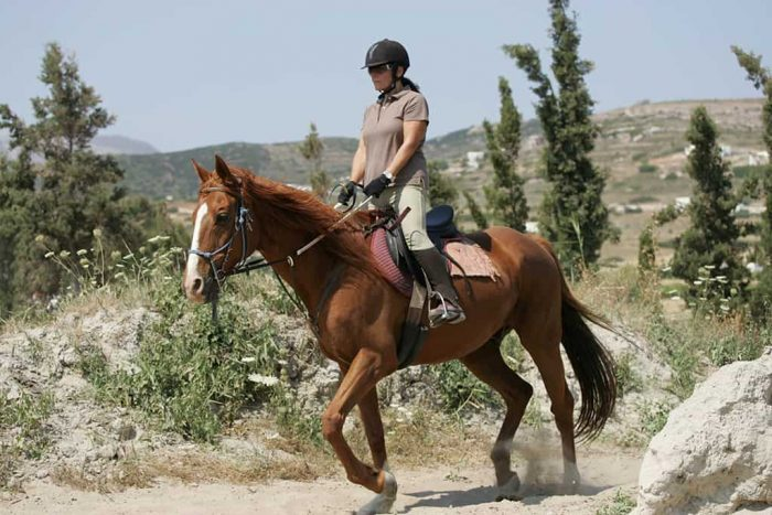 5 Best Horse Riding Destinations in USA
