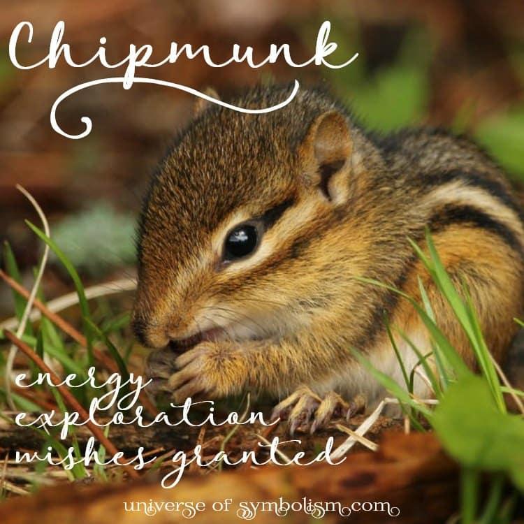 symbolic meaning of chipmunk