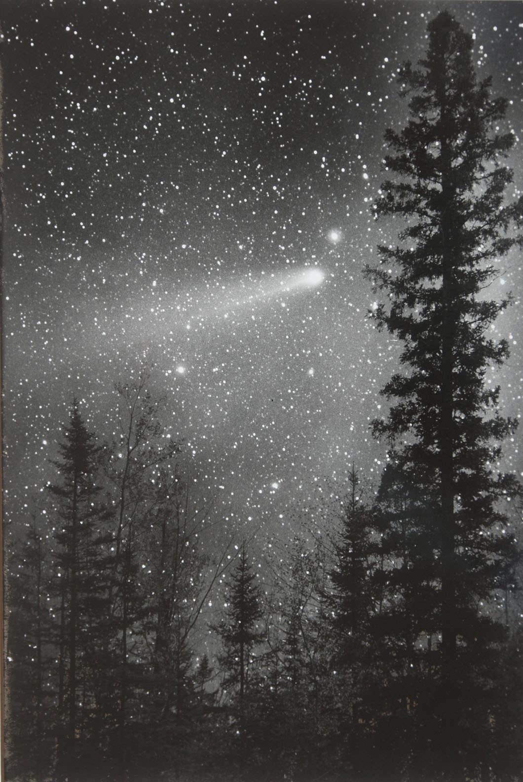 Revisit Halley S Comet