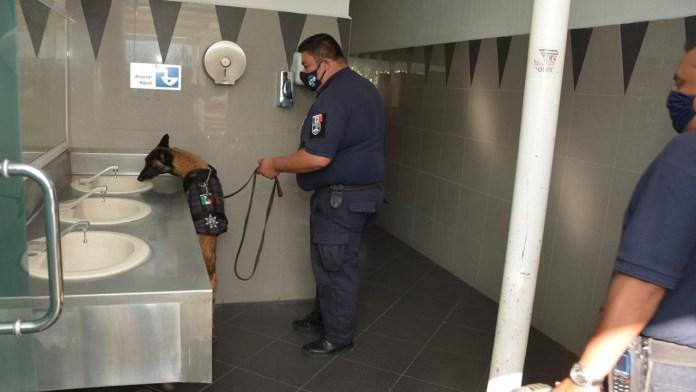 Examen de Ingreso en CU | Equipos de binomios caninos, hicieron trabajo de detección de explosivos.