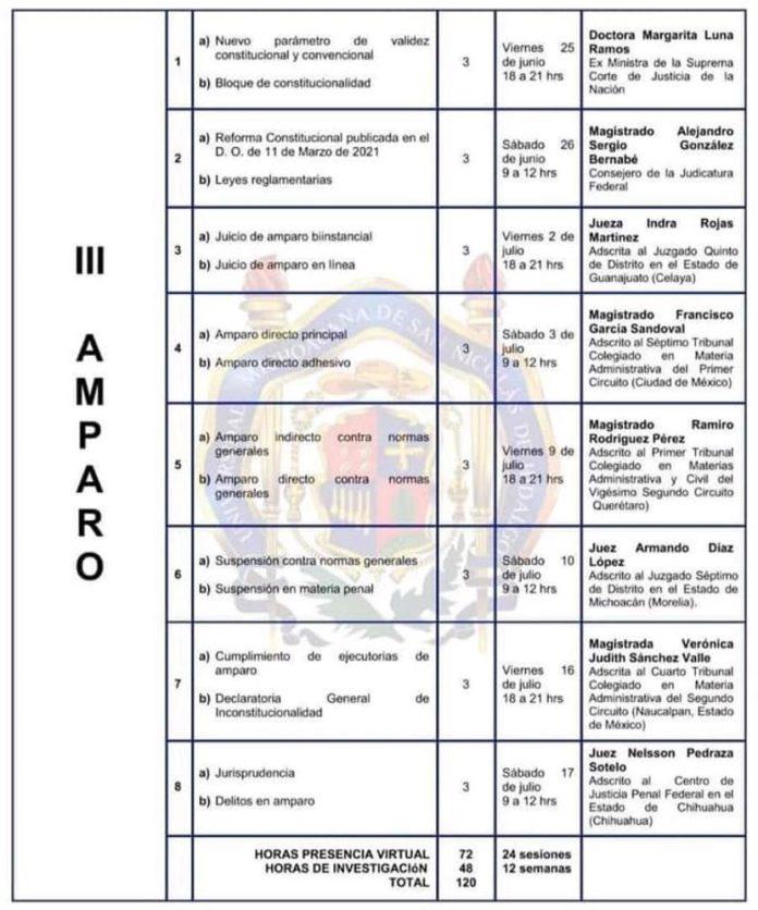 Diplomado en Derecho Electoral, Laboral y Amparo en la FDCS - UMSNH - Modulo de Amparo