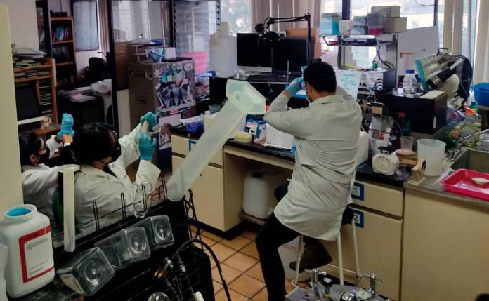 El Doctorado en Ciencias de la Salud y Farmacéuticas, programa de posgrado realizado en coordinación con la Facultad de Químico Farmacobiología, la Facultad de Salud Pública y Enfermería y el Instituto de Investigaciones Químico Biológicas