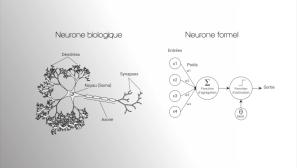 mooc-des-neurones-a-la-psyche2.004