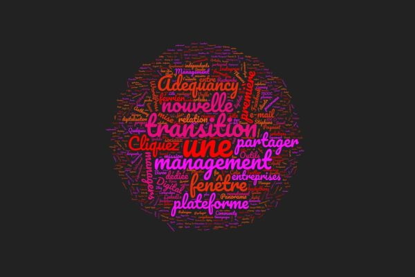 management-transition