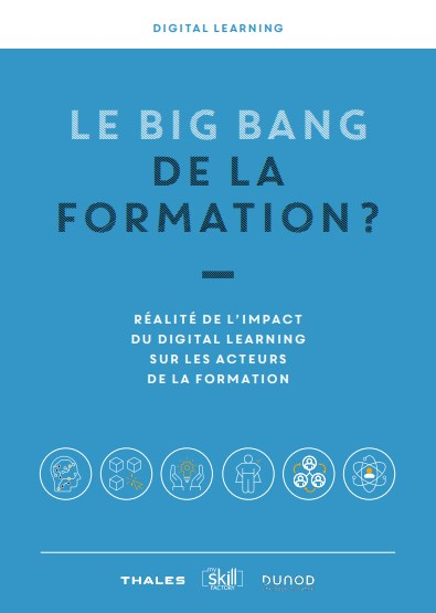 big-bang-formation-livre-blanc