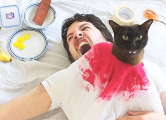 Guy e os seus gatos recriam juntos cenas famosas de filmes
