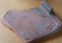 Pawprint de 2000 anos de idade encontrada em uma telha de telhado