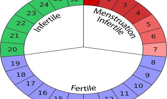 periodo fertile come si calcola