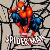 El mundo según Spiderman (Laberinto)