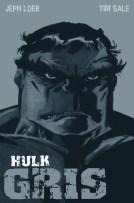 100% Marvel HC. Hulk: Gris (Panini)