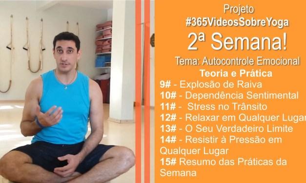 Projeto #365VideosSobreYoga – 2ª Semana Com Vídeos De Autocontrole Emocional Através Do Yoga