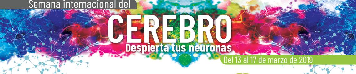 Semana Internacional del Cerebro 2019