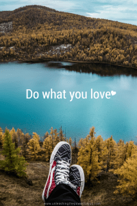Life quote - do what you love