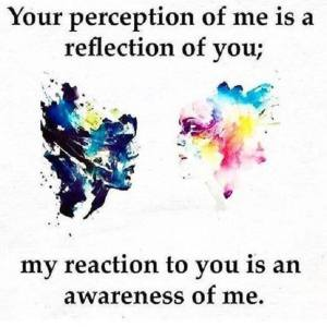 Your perception of me is a reflection of you