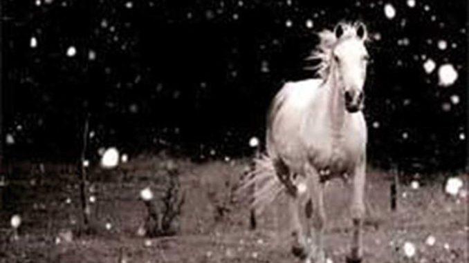 Nevicava Sangue Eraldo Baldini Recensioni Libri e News UnLibro