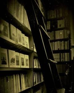 Libreria Il Domani Milano Recensioni Libri e News Unlibro