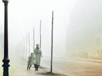 Lombra del vento Recensioni Libri e News UnLibro
