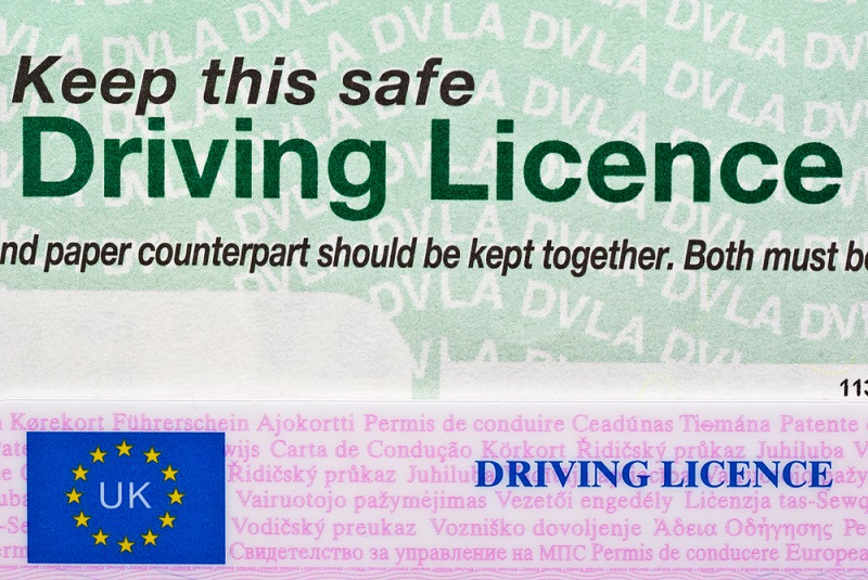 Find Drivers License Online