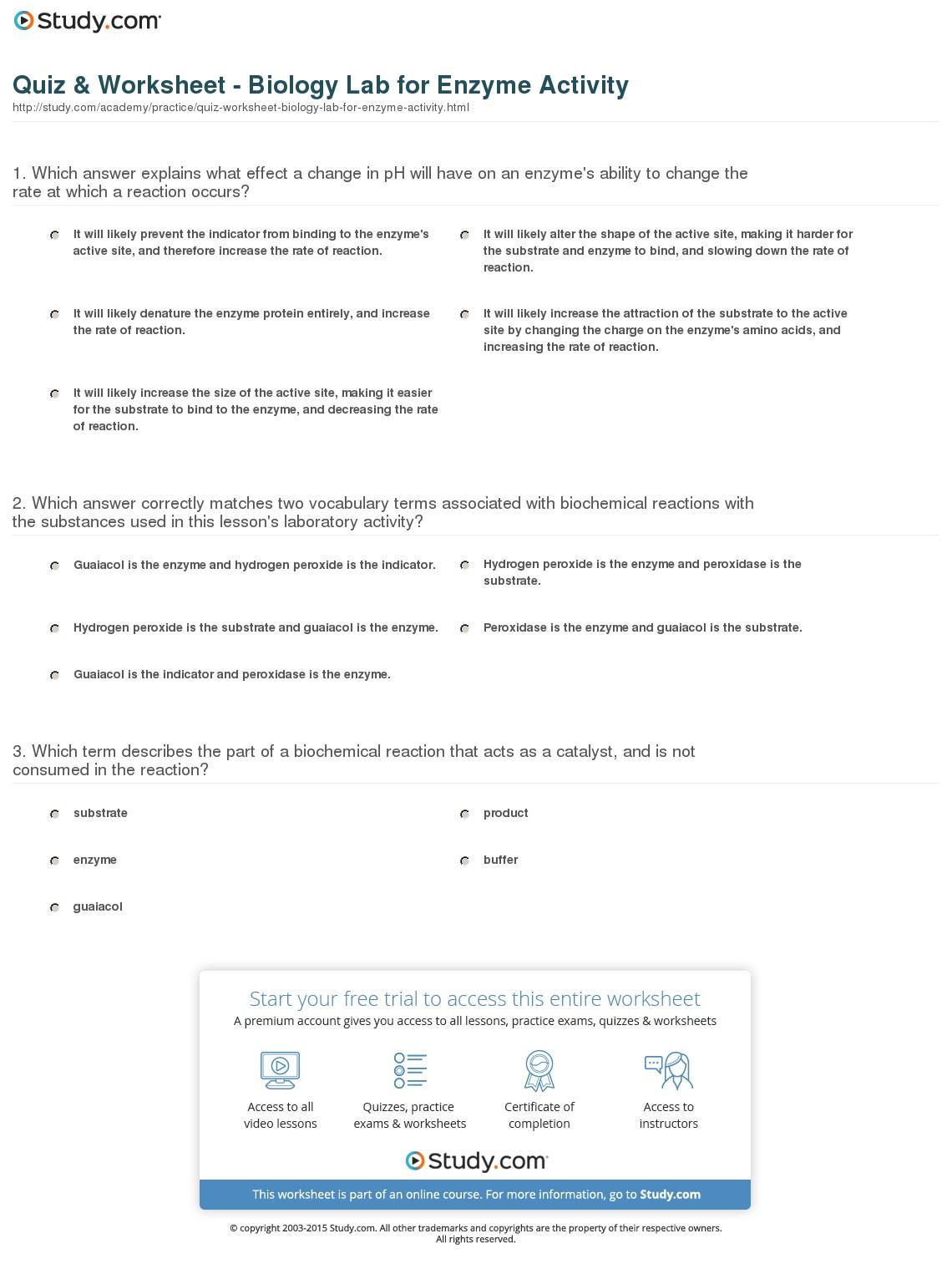 Skills Worksheet Biochemistry Answers