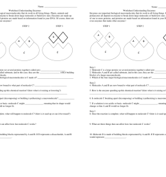 Energy Comprehension Worksheets   Printable Worksheets and Activities for  Teachers [ 791 x 1024 Pixel ]