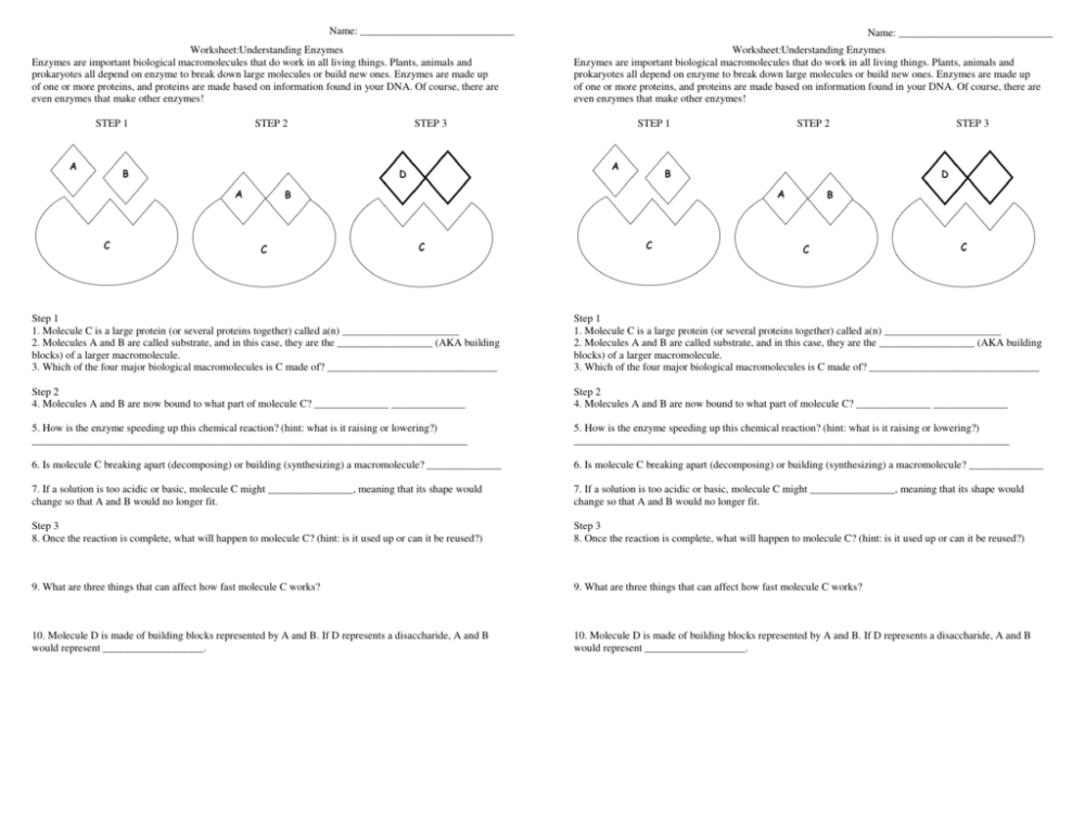medium resolution of Energy Comprehension Worksheets   Printable Worksheets and Activities for  Teachers