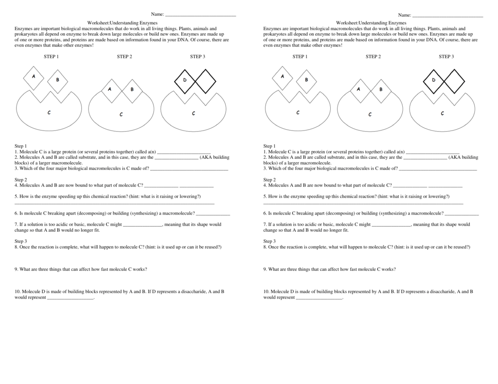 hight resolution of Energy Comprehension Worksheets   Printable Worksheets and Activities for  Teachers