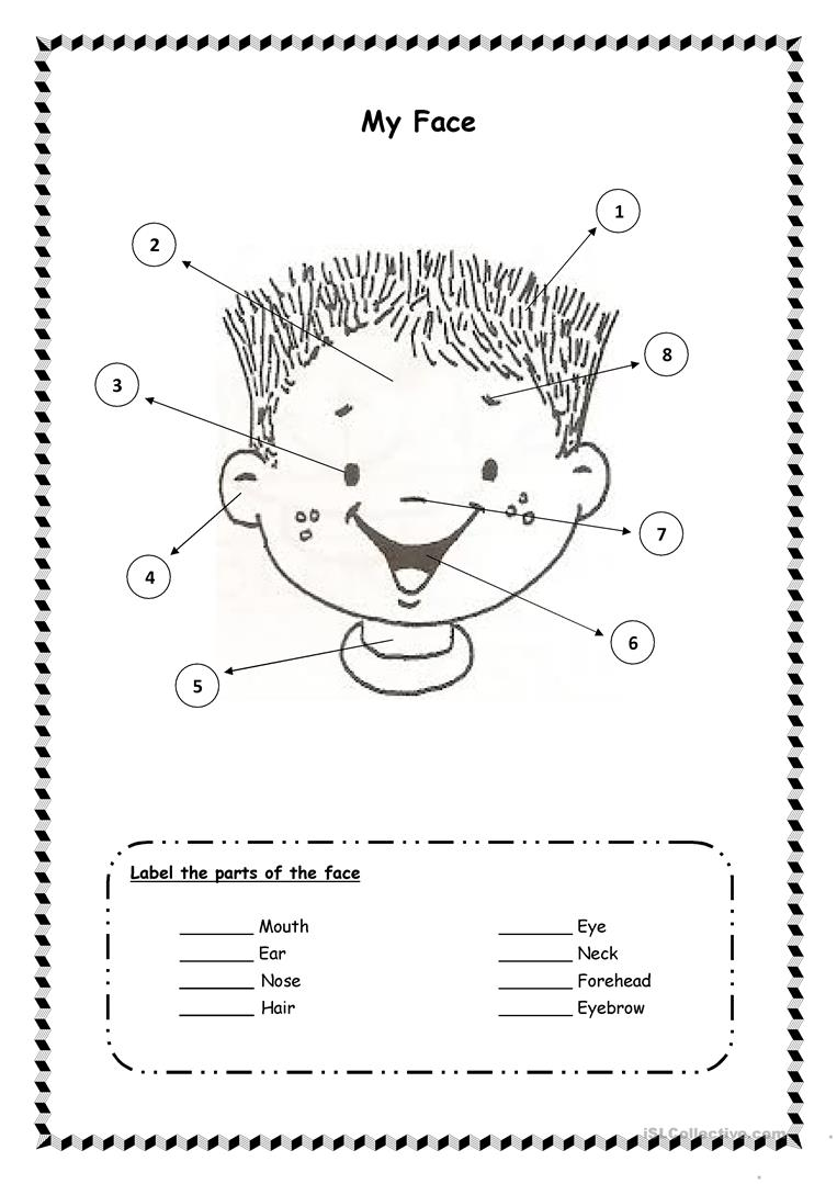 My Face Worksheets For Preschool