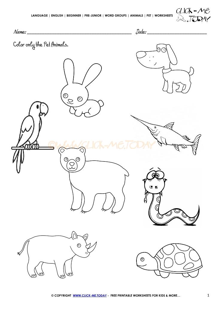 Pet Animals Worksheets Kindergarten