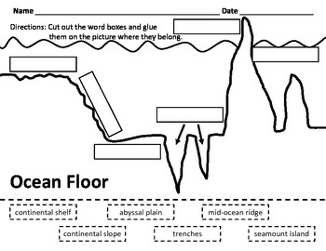 Ocean Camouflage Worksheet